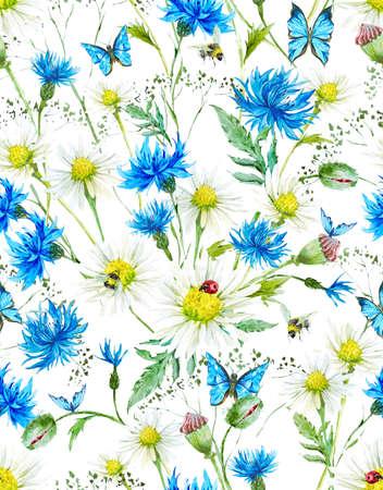 marguerite: Motif floral Aquarelle Vintage Summer transparente avec Blooming camomille et Marguerites Cornflowers Ladybird Bumblebee Abeille et papillons bleus, Illustration d'aquarelle Banque d'images