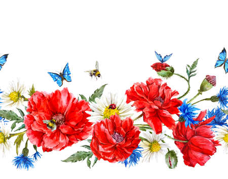bee on white flower: Summer Watercolor Vintage Floral Seamless Border with Blooming Red Poppies Chamomile Ladybird and Daisies Cornflowers Bumblebee Bee and Blue Butterflies, Watercolor illustration on white background.