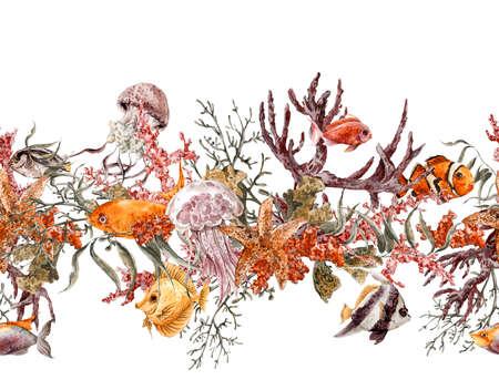 stella marina: Estate Vintage Acquerello Sea Life Seamless Border con alghe marine corallo Alghe, Medusa e Pesce, Underwater Illustrazione dell'acquerello.