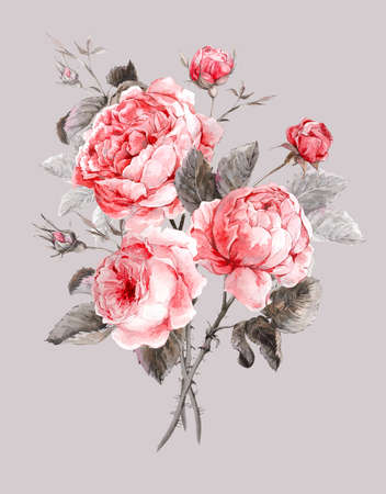 shabby: Classical vintage floral greeting card, watercolor bouquet of English roses, beautiful watercolor illustration Stock Photo
