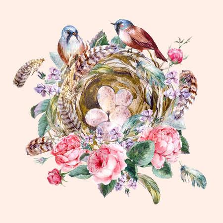 feather: Acuarela cl�sica tarjeta de felicitaci�n floral del vintage con los p�jaros nidos de rosa y plumas, ejemplo de la acuarela Foto de archivo