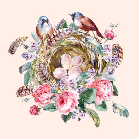 feather: Classical watercolor floral vintage greeting card with rose birds nests and feathers, watercolor illustration