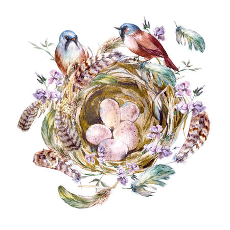 nest egg: Watercolor floral vintage greeting card with birds nests and feathers, watercolor illustration
