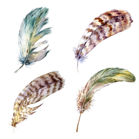 boho: Set vintage watercolor feathers, watercolor illustration isolated on white background