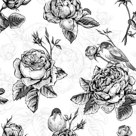 rosas blancas: Fondo floral blanco y negro inconsútil de la vendimia con Blooming Rosas inglesas, ilustración vectorial Vectores