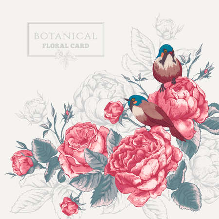 card: Botanical floral card in vintage style with blooming english roses and birds, vector illustration on gray background
