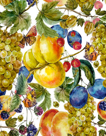 festival of the grape harvest: Autumn harvest watercolor seamless pattern with fruits and butterflies. Grapes Plum BlackBerry Peach Apricot Strawberry Gooseberry. Botanical watercolor illustration Stock Photo
