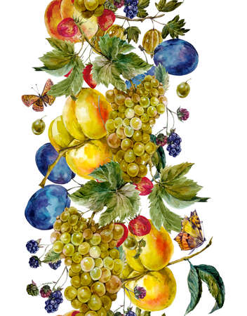 festival of the grape harvest: Autumn harvest watercolor seamless border with fruits and butterflies. Grapes Plum BlackBerry Peach Apricot Strawberry Gooseberry. Botanical watercolor illustration