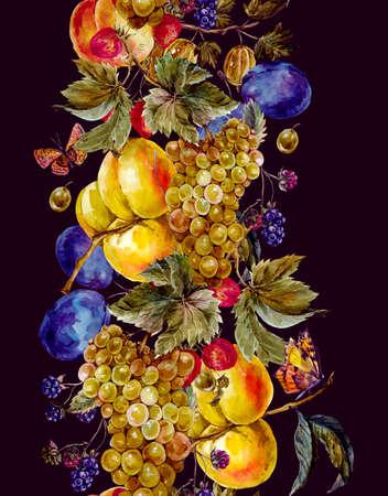 uvas: Frontera inconsútil de la cosecha de otoño de la acuarela con las frutas y las mariposas. Uvas del ciruelo Blackberry melocotón albaricoque de la fresa de la grosella espinosa. ilustración botánica de la acuarela