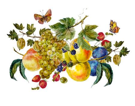 과일과 나비와 함께 가을 수확 수채화 빈티지 카드입니다. 포도 자두 블랙 베리 복숭아 살구 딸기 구스베리. 식물 수채화 그림