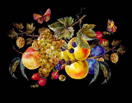 watercolour background: Autumn harvest watercolor vintage card with fruits and butterflies. Grapes Plum BlackBerry Peach Apricot Strawberry Gooseberry. Botanical watercolor illustration Stock Photo