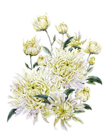 Vintage Watercolor Floral Card with Chrysanthemums. Watercolor Illustration