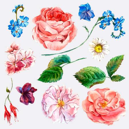 Stel vintage waterverf boeket rozen verlaat takken bloemen en wilde bloemen, aquarel illustratie op een witte achtergrond