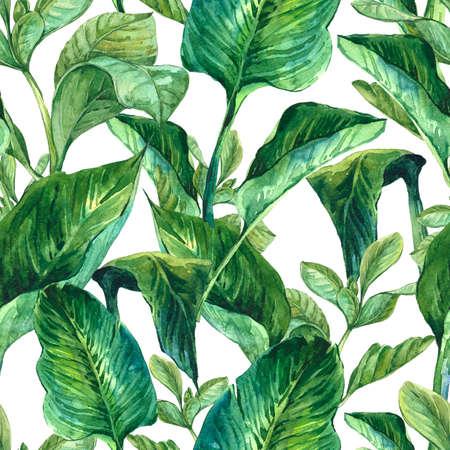 verde: Acuarela inconsútil Fondo exótica con hojas tropicales, ilustración botánica