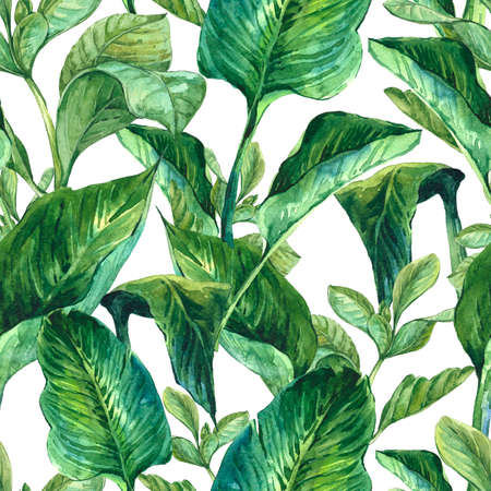 jungle green: Watercolor Seamless Exotic Background with Tropical Leaves, Botanical illustration
