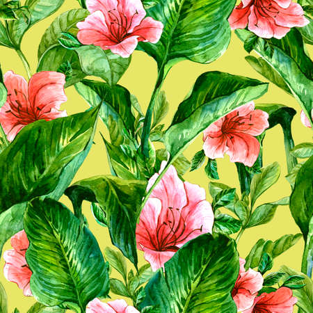 tropical flowers: Watercolor Seamless Exotic Background with Tropical Leaves and Hibiscus Flowers, Botanical illustration Stock Photo
