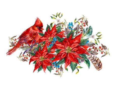 flor de pascua: tarjeta de felicitación de navidad de la acuarela de la vendimia floral con bayas de color azul, flor de pascua, plumas y cardenal rojo de las aves. ilustración botánica de la acuarela
