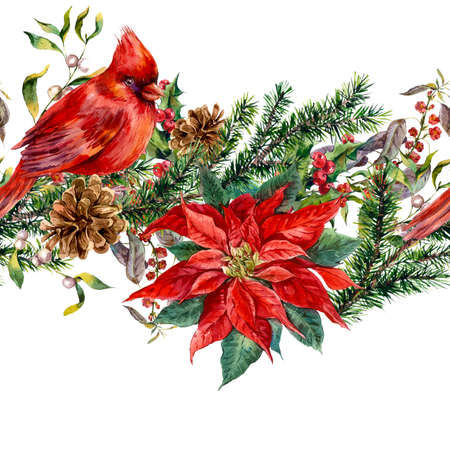 Watercolor Christmas vintage floral seamless border with blue berries, poinsettia, feathers and bird red cardinal. Botanical watercolor illustration