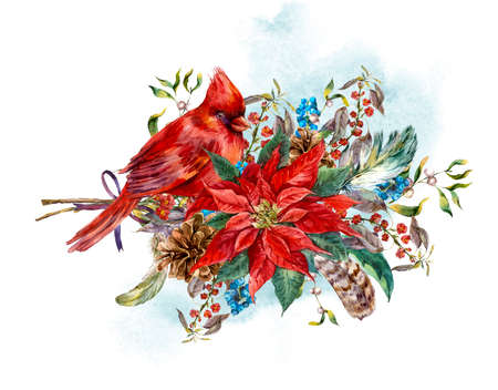 holly day: Watercolor Christmas vintage floral greeting card with blue berries, poinsettia, feathers and bird red cardinal. Botanical watercolor illustration