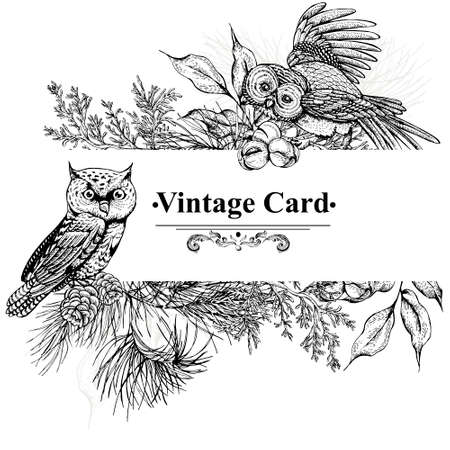 christmas owl: Monochrome vintage greeting card with owls, spruce branches and fir cones, Love You vector illustration Illustration