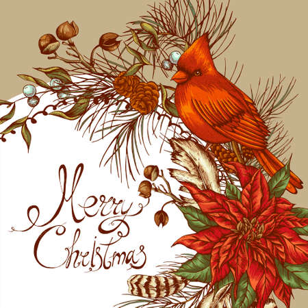 Christmas vintage floral greeting card with poinsettia, bird red cardinal. Botanical vector illustration