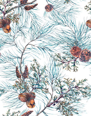 fir cones: Winter Watercolor Christmas Seamless Pattern with Tree Branches, Fir Cones and Leaves. Natural Hand Painted Illustration on White Background