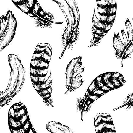 piuma bianca: Vintage black and white seamless background with vintage feather. Hand drawn vector illustration.