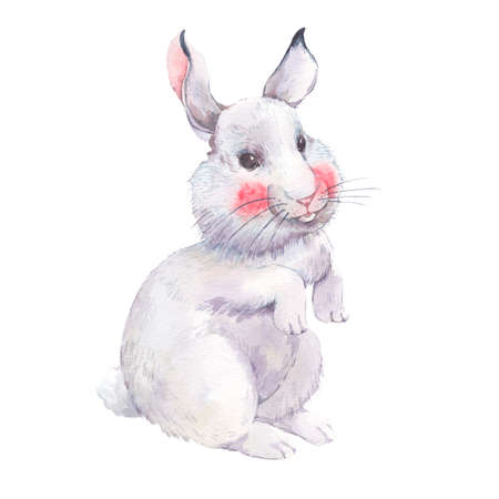 single sketch: Watercolor Easter bunny isolated on white background, animal watercolor illustration Stock Photo
