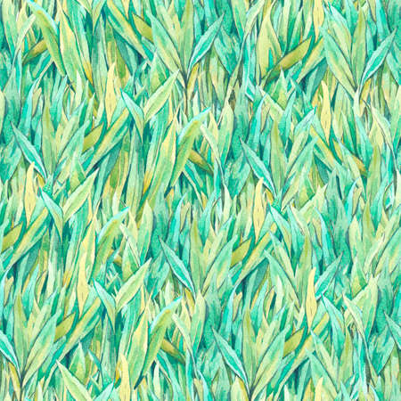 green fields: Gentle vintage meadow watercolor seamless pattern with green grass, spring watercolor illustrations Stock Photo