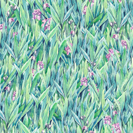 green fields: Gentle vintage meadow watercolor seamless pattern with green grass and flowers, spring watercolor illustrations