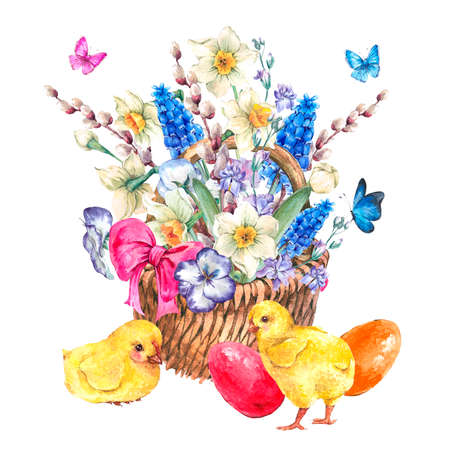 Happy Easter spring bouquet with daffodils, violets, easter eggs, chickens, pussy-willow, pansies, muscari and butterflies in the wicker, vintage watercolor illustration