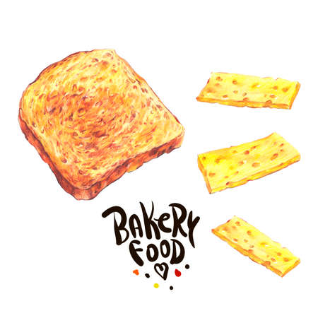 toast: Hand drawn bakery products isolated on a white background, Delicious crispy toast with cheese, Retro pencil food illustration