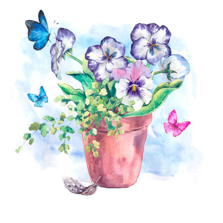 pansies: Watercolor Garden Spring bouquet in flower pots, pansies and butterflies, botanical vintage watercolor illustration isolated on a white background