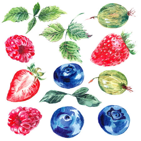 red berries: Set of watercolor fruits and berries isolated on a white background, separately leaves, strawberries, gooseberries, blueberries, raspberries, summer eco food illustrations Stock Photo