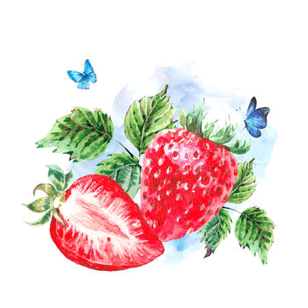 autumn garden: Hand painting summer watercolor strawberry nature eco greeting card on white background. Botanical berries illustration