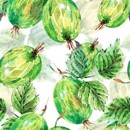 手の絵画の夏の水彩画グーズベリー、白地自然環境のシームレスな背景。植物の果実パターン 写真素材