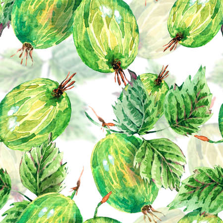Hand painting summer watercolor gooseberries, nature eco seamless background on white. Botanical berries pattern Banco de Imagens - 55449022