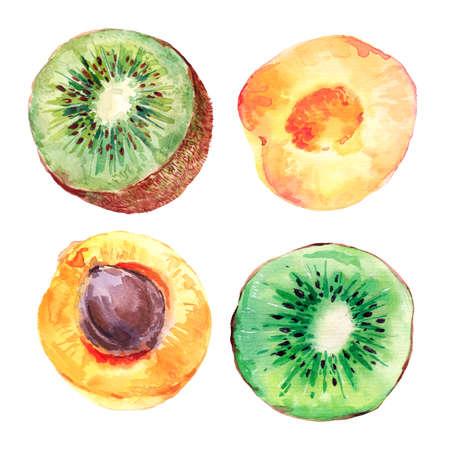 kiwi: Set of watercolor kiwi fruit and apricots, botanical fruits collection, isolated illustration Stock Photo