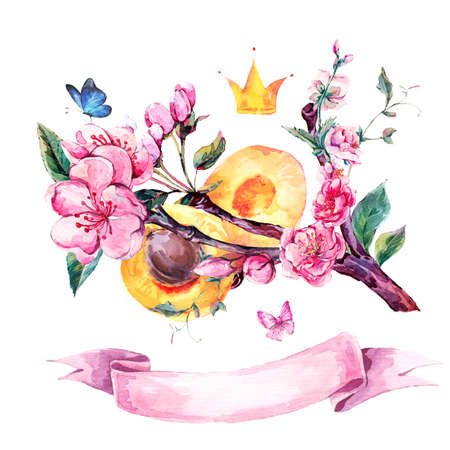 apricot tree: Natural spring watercolor greeting card with fruits and flowers apricot tree branches, isolated decorative botanical illustration with flowers, crown, butterflies and ribbon