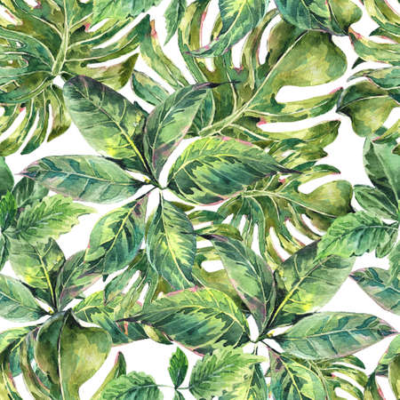 Natural leaves exotic watercolor seamless pattern, green tropical leaves, botanical summer illustration on white background