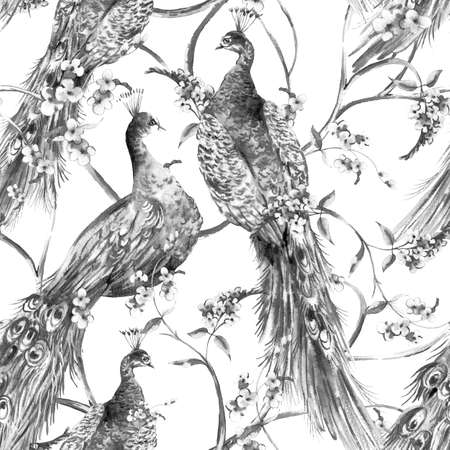 wallpaper floral: Black and white watercolor flower vintage seamless pattern with peacocks, branches and leaves, natural wallpaper, floral decoration curl illustration Stock Photo