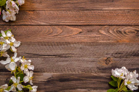 Rustic wood background with natural style decorations spring white blossom. Background space for text. Natural blue border background vintage mock up. Stock Photo