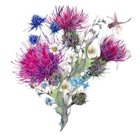야생 꽃, 엉겅퀴, 민들레, 여름 자연 초원 수채화 인사말 카드 허브, 카모마일과 잠자리 초원. 식물 빈티지 고립 수채화 그림