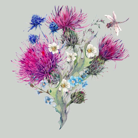 Summer watercolor natural bouquet with wild flowers, thistles, dandelions, meadow herbs, chamomile and a dragonfly. Botanical vintage meadow isolated watercolor illustration