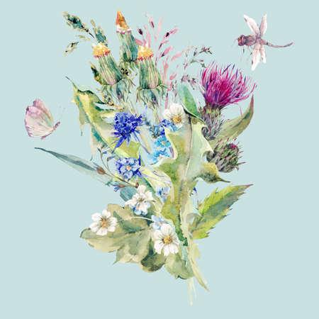 夏と野生の花、アザミ、タンポポ、草原ハーブ、カモミール、トンボの水彩自然のブーケ。分離された植物のビンテージ草原水彩イラスト