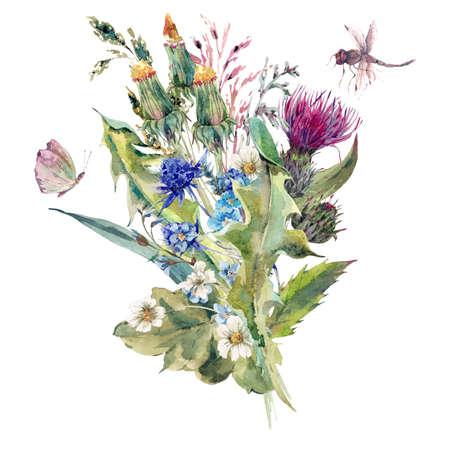 夏自然草原水彩グリーティング カードと野生の花、アザミ、タンポポ、草原ハーブ、カモミール、トンボ。植物の分離されたヴィンテージの水彩イラスト