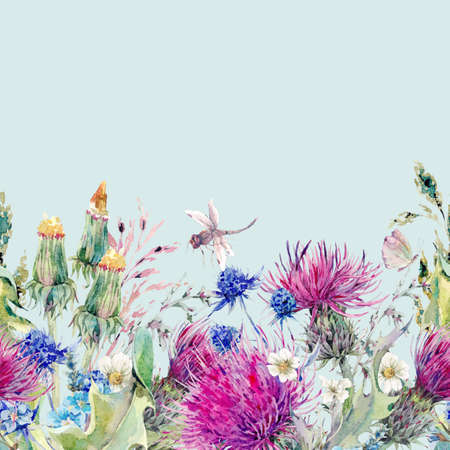 grass border: Summer natural meadow watercolor seamless floral border with wild flowers, thistles, dandelions, meadow herbs, chamomile and a dragonfly. Botanical Vintage isolated watercolor illustration