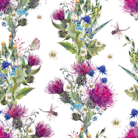 thistle plant: Summer natural meadow watercolor seamless floral pattern with wild flowers, thistles, dandelions, meadow herbs, chamomile and a dragonfly. Botanical Vintage isolated watercolor pattern Stock Photo