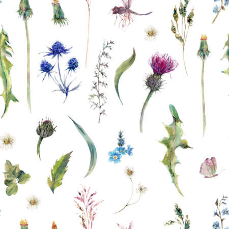 Summer natural herbal watercolor seamless floral pattern with wild flowers, thistles, dandelions, meadow herbs, chamomile and a dragonfly. Botanical meadow vintage watercolor pattern