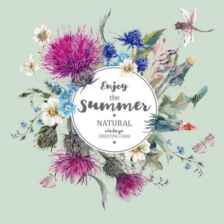 ヴィンテージ天然ハーブ グリーティング カード咲く草原花アザミ、タンポポ、草原ハーブ、カモミール、トンボで。ミントの植物花のベクトル ヴ  イラスト・ベクター素材